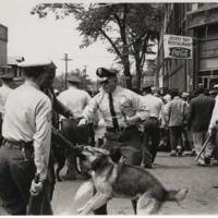 RVPM Henry Photo: African American attacked by police dog