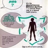 AIDS Brochure, 1984